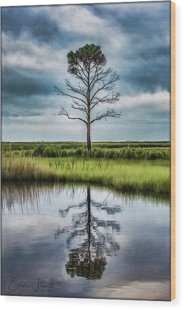 Lone Tree Reflected Wood Print