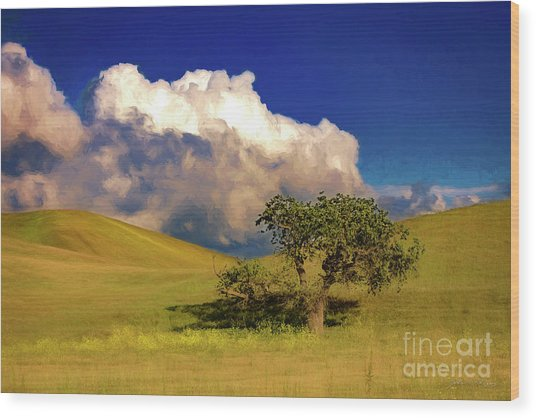 Lone Tree With Storm Clouds Wood Print