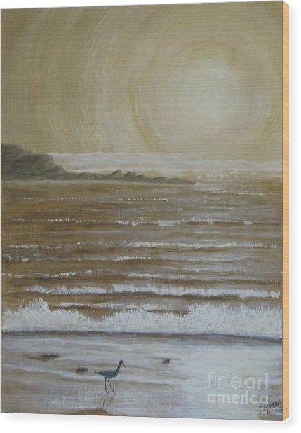 Lonely Beach Sunrise Wood Print by Dana Carroll