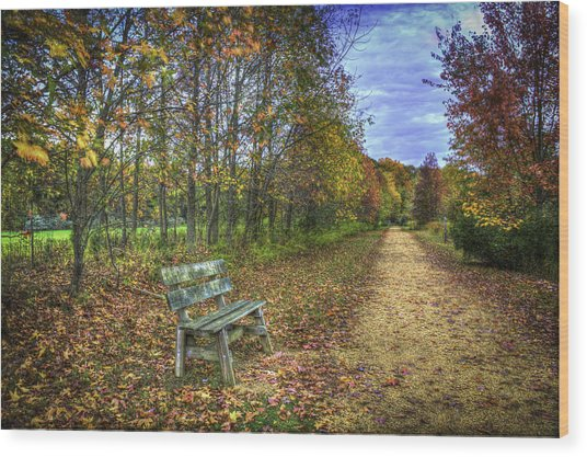 Lonely Chair Wood Print