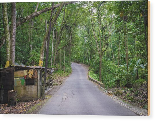 Lonely Country Road Wood Print
