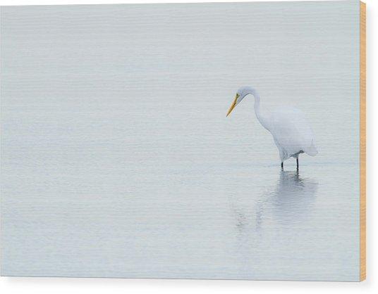 Lonely Egret Wood Print