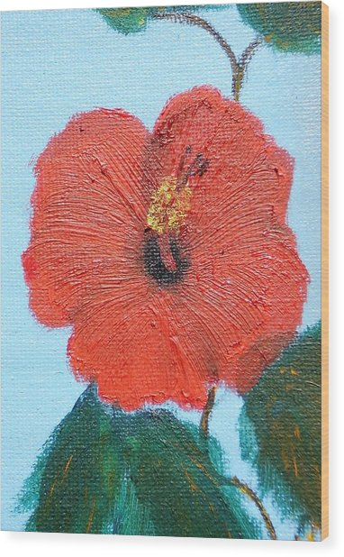 lonely Hibiscus  Wood Print by Francis Roberts ll