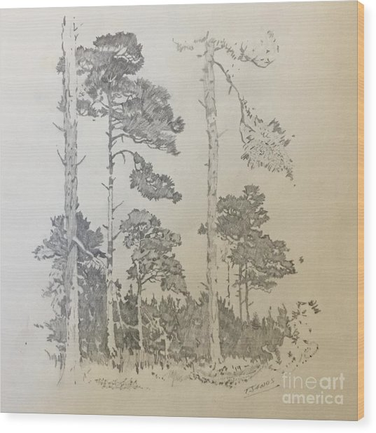 Lonely Pines Wood Print