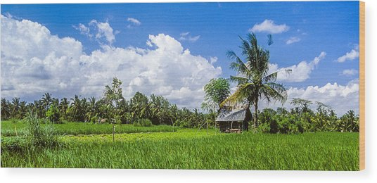 Lonely Rice Hut Wood Print