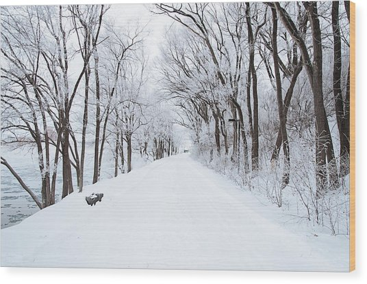 Lonely Snowy Road Wood Print