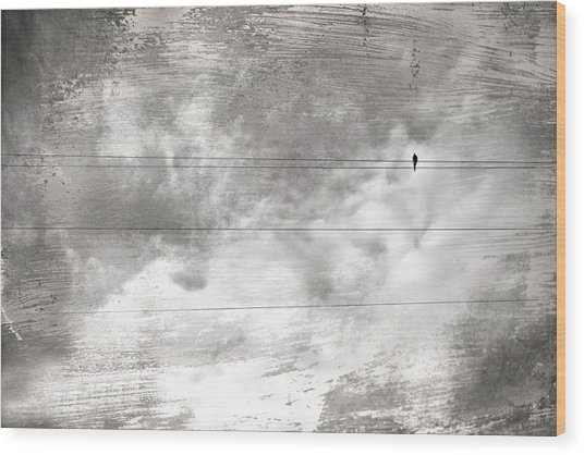 Lonesome Dove Wood Print