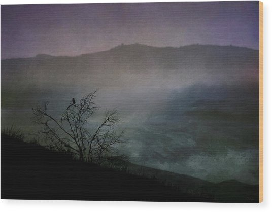 Lonesome Point Wood Print