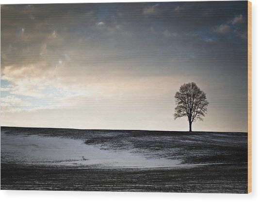 Lonesome Tree On A Hill IIi Wood Print