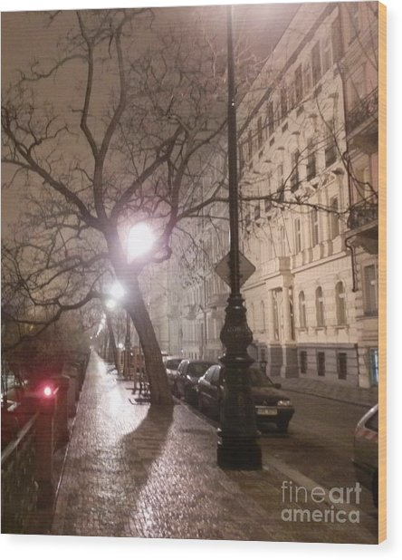 Long Cobblestone Street Of Prague Wood Print