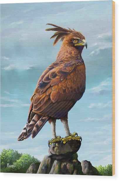 Long Crested Eagle Wood Print