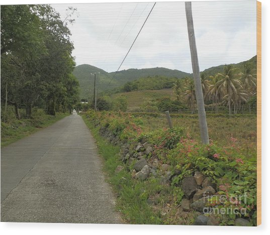 Long Road Into Colombier Wood Print