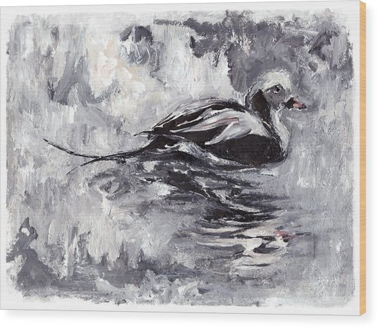 Long-tailed Duck Wood Print