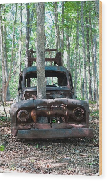 Long Time Gone Wood Print by Maureen Norcross
