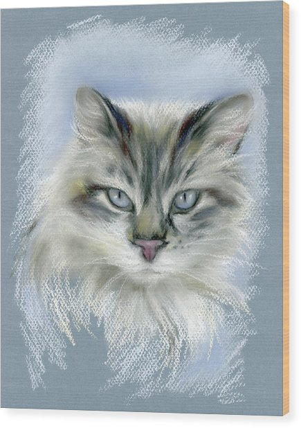 Longhaired Cat With Blue Eyes Wood Print