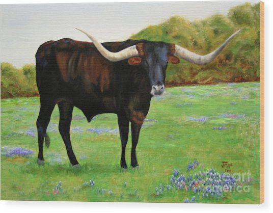Longhorn In Bluebonnets Wood Print