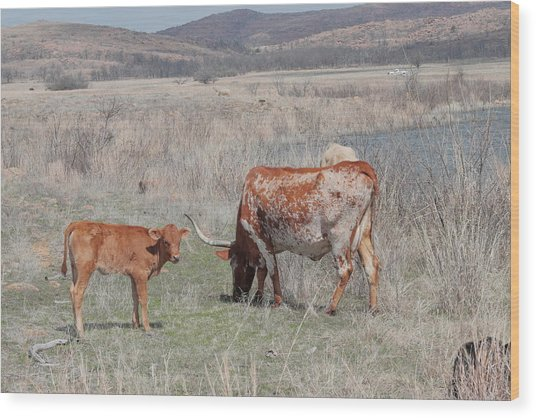 Longhorn Wood Print