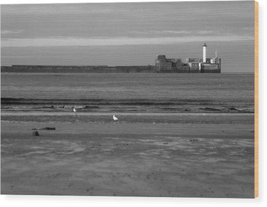 Lonley Sea Wood Print by Jez C Self