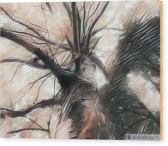 Lookin Up The Tree #digitalart Wood Print by Michal Dunaj