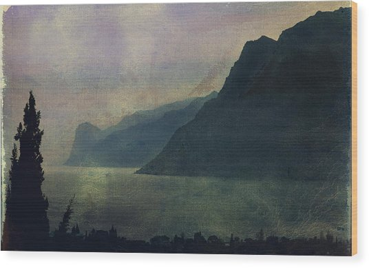 Looking At The Lake... Wood Print