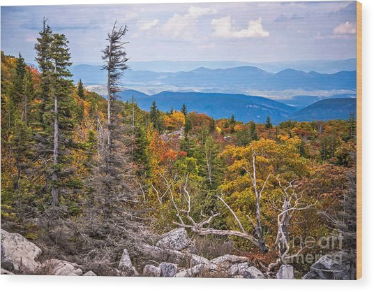 Looking East From Bear Rocks 4290c Wood Print