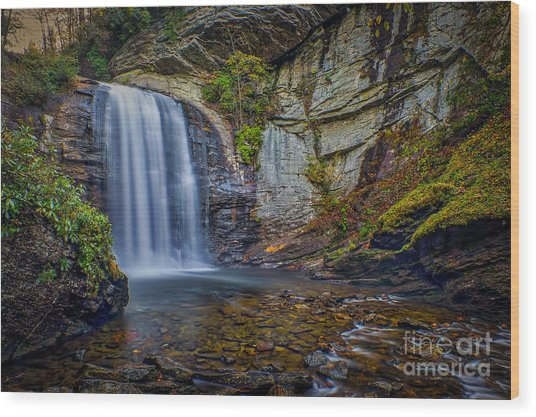 Wood Print featuring the photograph Looking Glass Falls In The Blue Ridge Mountains Brevard North Carolina by T Lowry Wilson