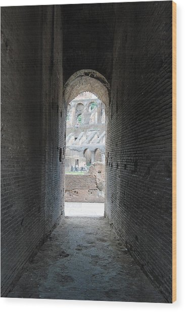 Looking Into The Colosseum Wood Print by Armand Hebert