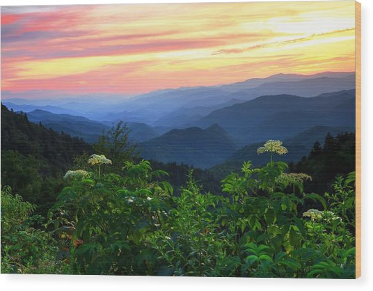 Looking Out Over Woolyback On The Blue Ridge Parkway  Wood Print