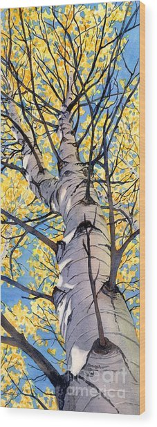 Looking Up Wood Print by Lorraine Watry
