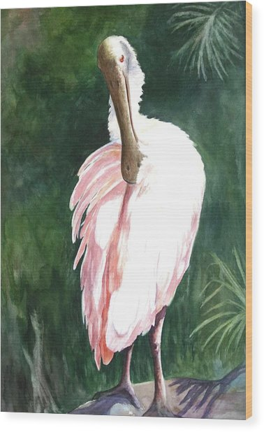 Look'n Back - Spoonbill Wood Print