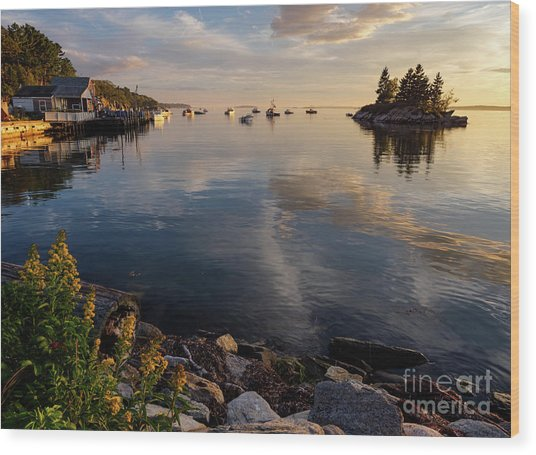 Lookout Point, Harpswell, Maine  -99044-990477 Wood Print