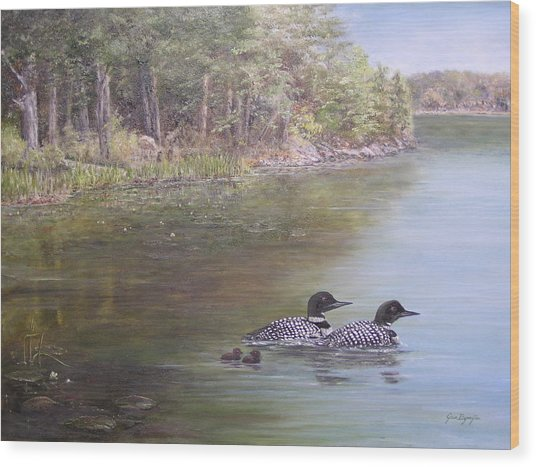Loon Family 1 Wood Print