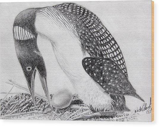 Loon Mother Wood Print