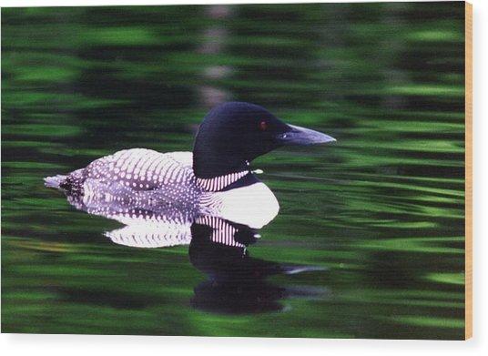 Loon On The Lake Wood Print