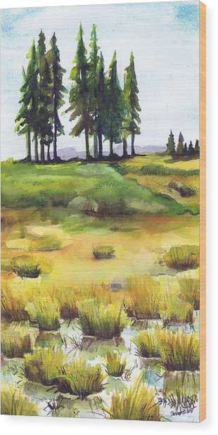 Lopaus Point Maine Wood Print