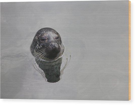 Lora Wood Print by Jim Dohms