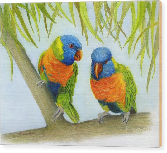 Lorikeet Pair Wood Print