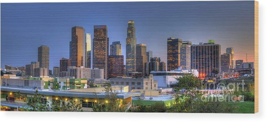 Los Angeles Skyline Wood Print