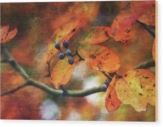 Lost Autumns Beauty 6570 Ldp_2 Wood Print