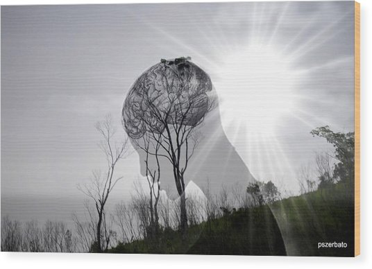 Lost Connection With Nature Wood Print
