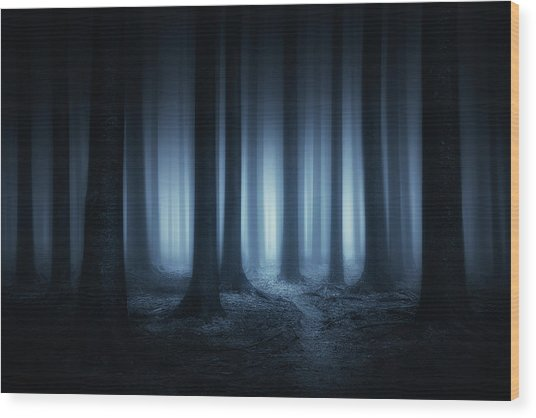 Lost In The Forest Wood Print