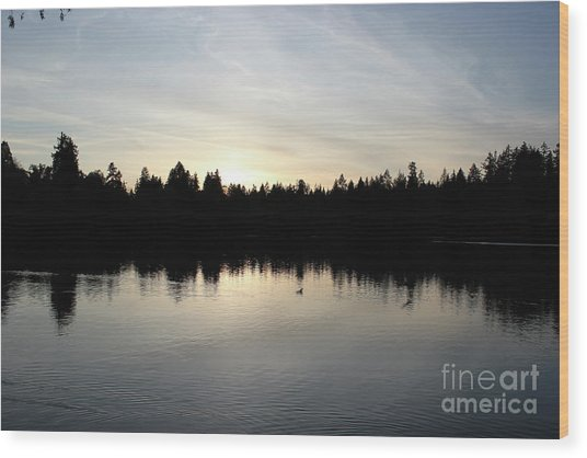 Lost Lagoon Wood Print