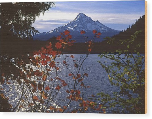 Lost Lake Wood Print