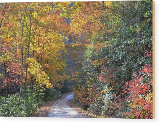 Lost Road Wood Print by Bob Jackson