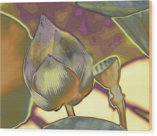 Lotus Dreaming 5 Wood Print