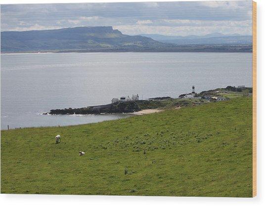 Lough Foyle 4210 Wood Print