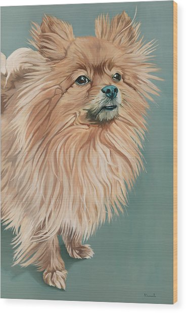 Louie The Majestic Wood Print
