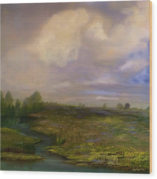 Louisiana Countryside Wood Print