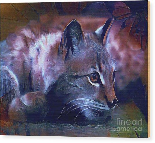 Lovable Feline Wood Print