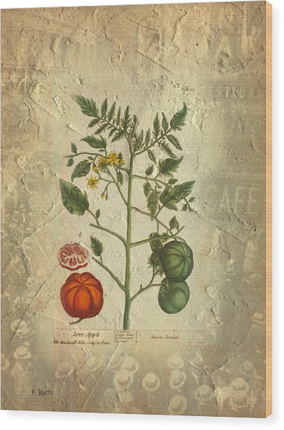 Love Apple Botanical  Wood Print